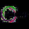 Logo-Brainhook