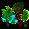 Logo-ClassicLaoDiFang