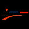 logo-apixelitsupport
